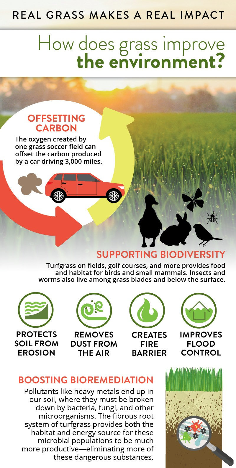 VTF Environmental Benefits 1.jpg