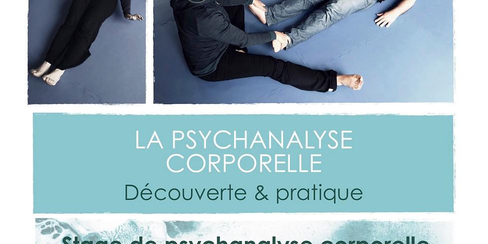 Stage de Psychanalyse Corporelle