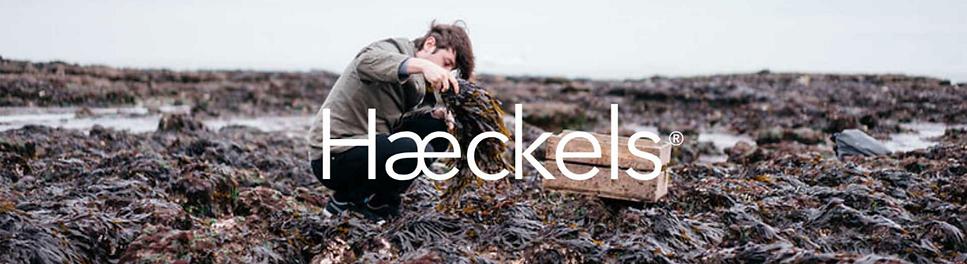 Haeckels.png
