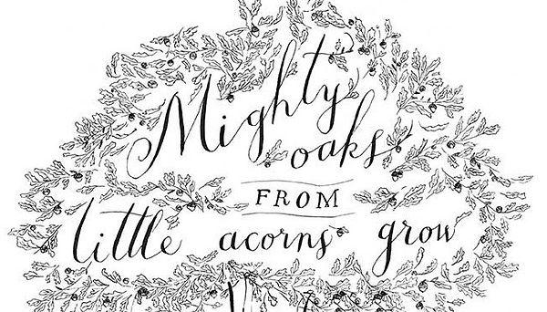 From acorns mighty oaks grow.jpg