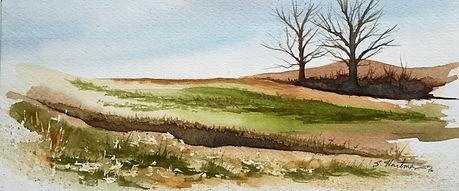 PA Landscape 5.jpg