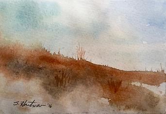 PA Landscape3.jpg