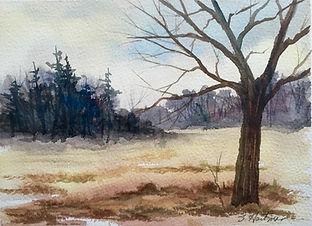 PA Landscape 2.jpg