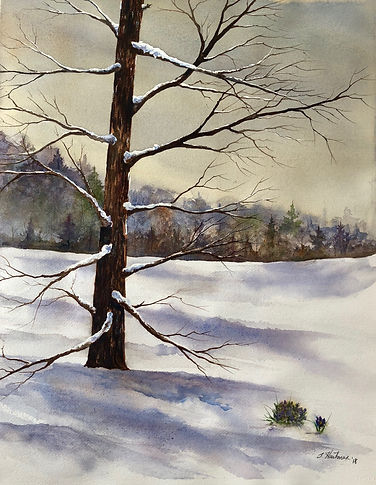 Early_Spring_ Snow_by_Scott_Hartman_26x2