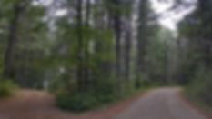 crossroads-997123__340.jpg