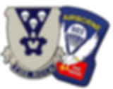 rock patch and pin.jpg