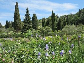 Jardins-Musée-International-de-la-Parfumerie-21-1080x810.jpg
