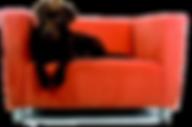 nettoyae fauteuil tissu à Avignon et dans le Vaucluse 84, nettoyage de sofa à domicile à Marseille et Aix-en-Provence, sofa cleaning company in Arles, nettoyage et désinfection de canapé Toulon et Hyères