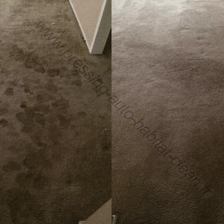 Carpet Cleaning In Monaco, PRESSING AUTO HABITAT CLEAN