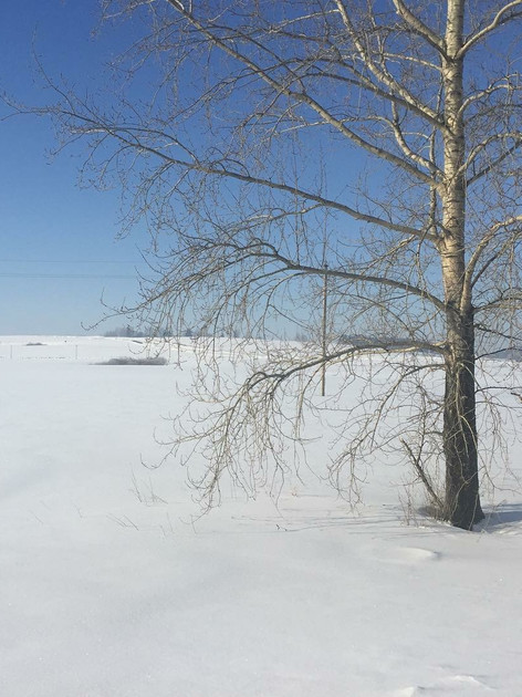 Winter outside Perm