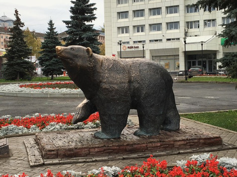 Perm Bear