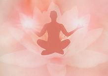 Medi in Lotus.jpg