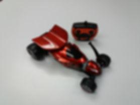 Xcorpion Pro RC 21011.jpg