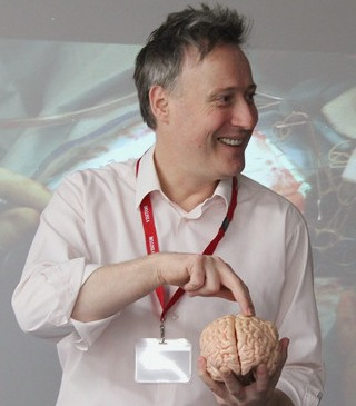 Open brain surgery
