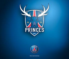 NBA-PRES_logo_L1xNBA-PARIS-5.png