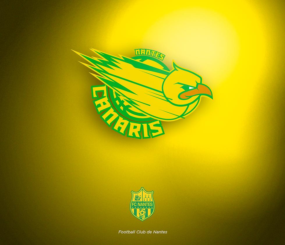NBA-PRES_logo_L1xNBA-NANTES-2.png
