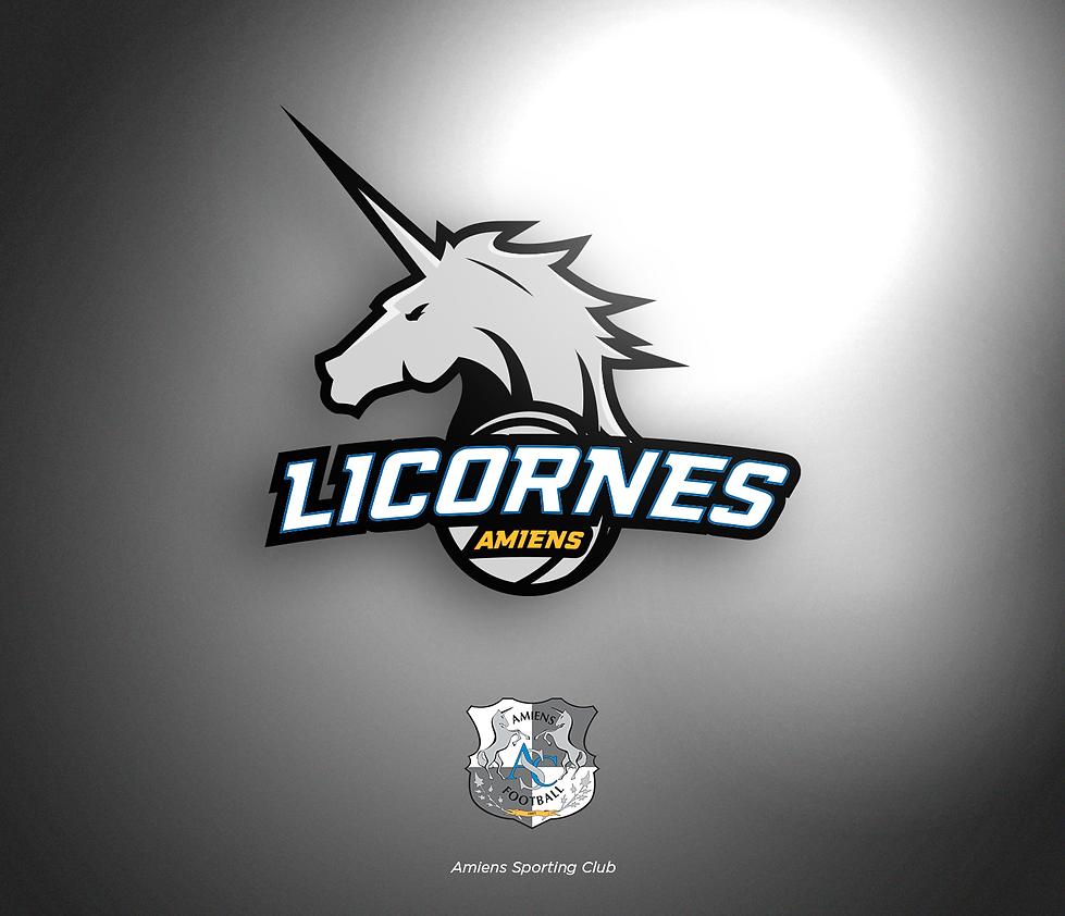 NBA-PRES_logo_L1xNBA-AMIENS-2.png