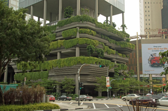 Gardens in Singapore