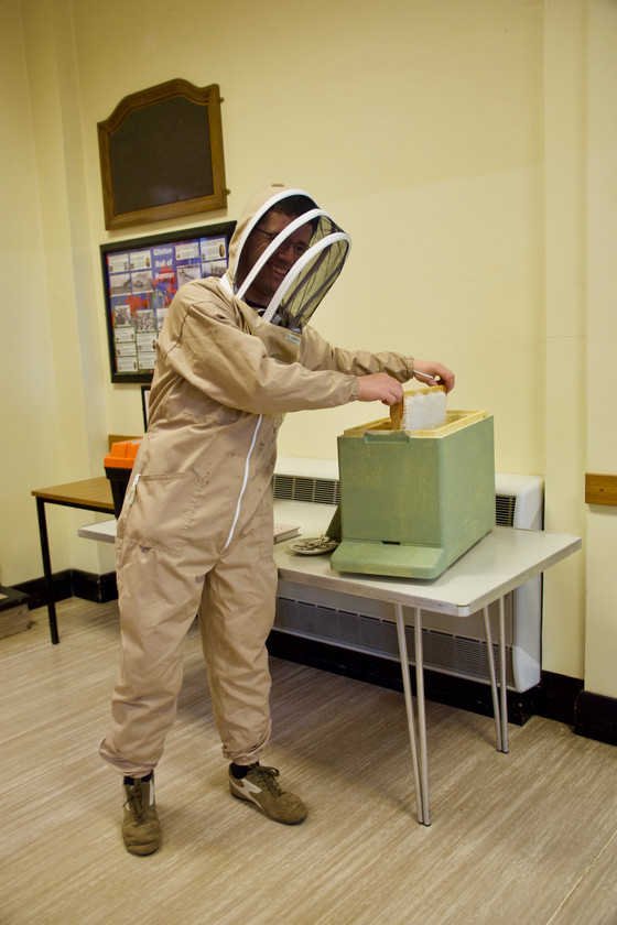 A Buzz through the Beekeeping Year!