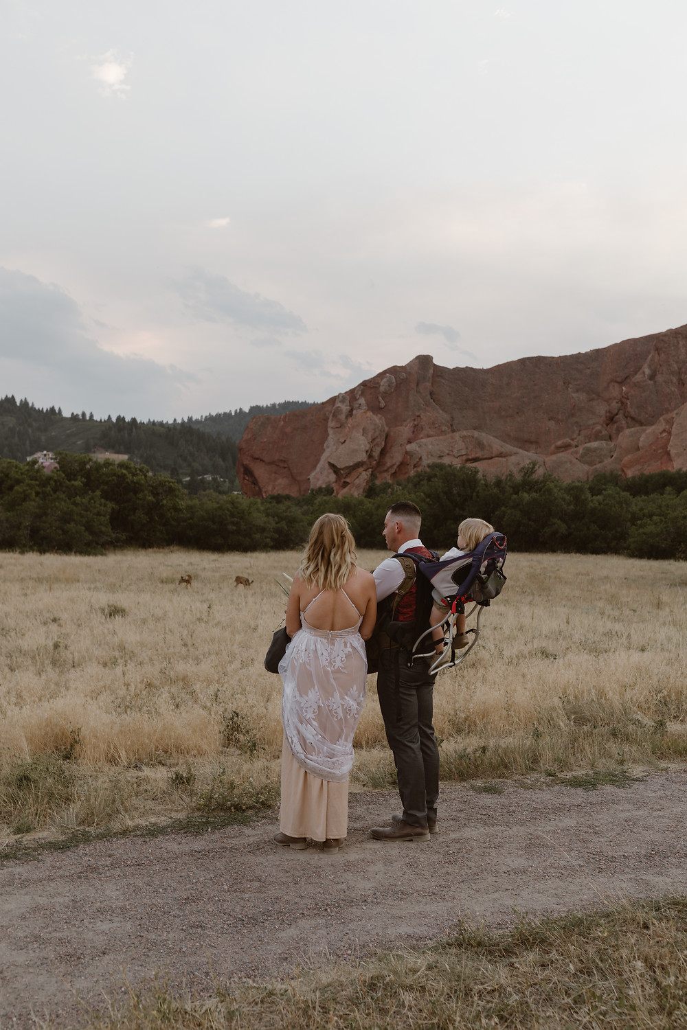 family viewing wildlife on their elopement day