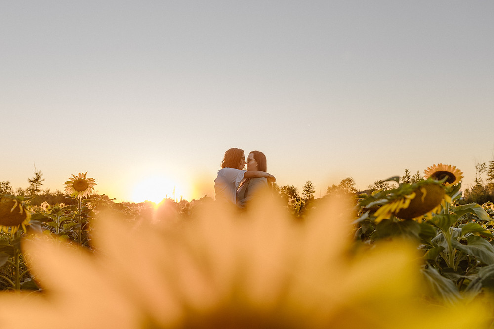 gay couple kissing at sunset in a sunflower field in Cleveland Ohio