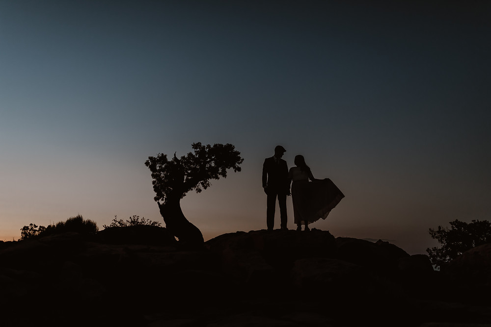 bride and groom stargazing silhouette next to a tree while bride lifts her dress up