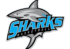 Sharks Basketball Logo