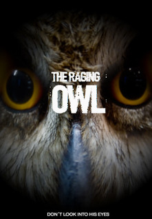 THE RAGING OWL.jpg