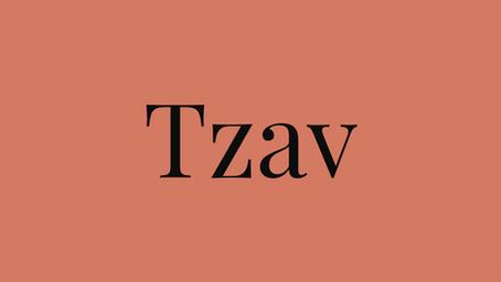 The Cost of Sin - Torah Portion Tzav