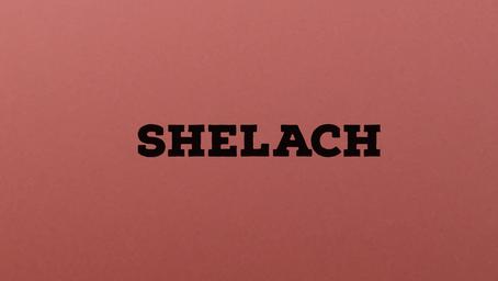 Torah Portion Shelach