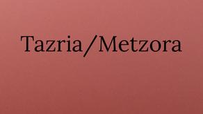 Torah Portion Tazria/Metzora