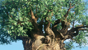 Creation and the Tree of Life/Guardians of The Way