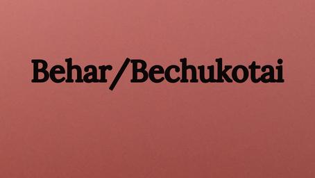 Shemitta and Jubilee/Redeeming Persons-  Behar/Bechukotai