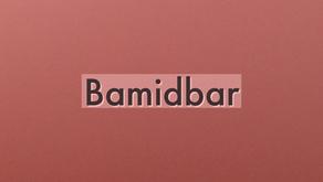 Into The Wilderness - Torah Portion Bamidbar