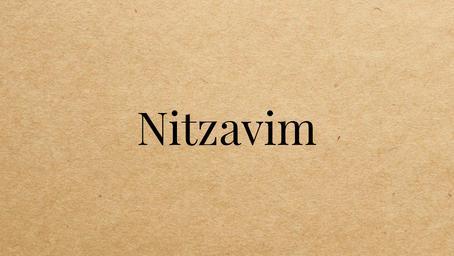 Torah Portion Nitzavim