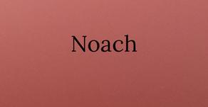 Torah Portion Noach
