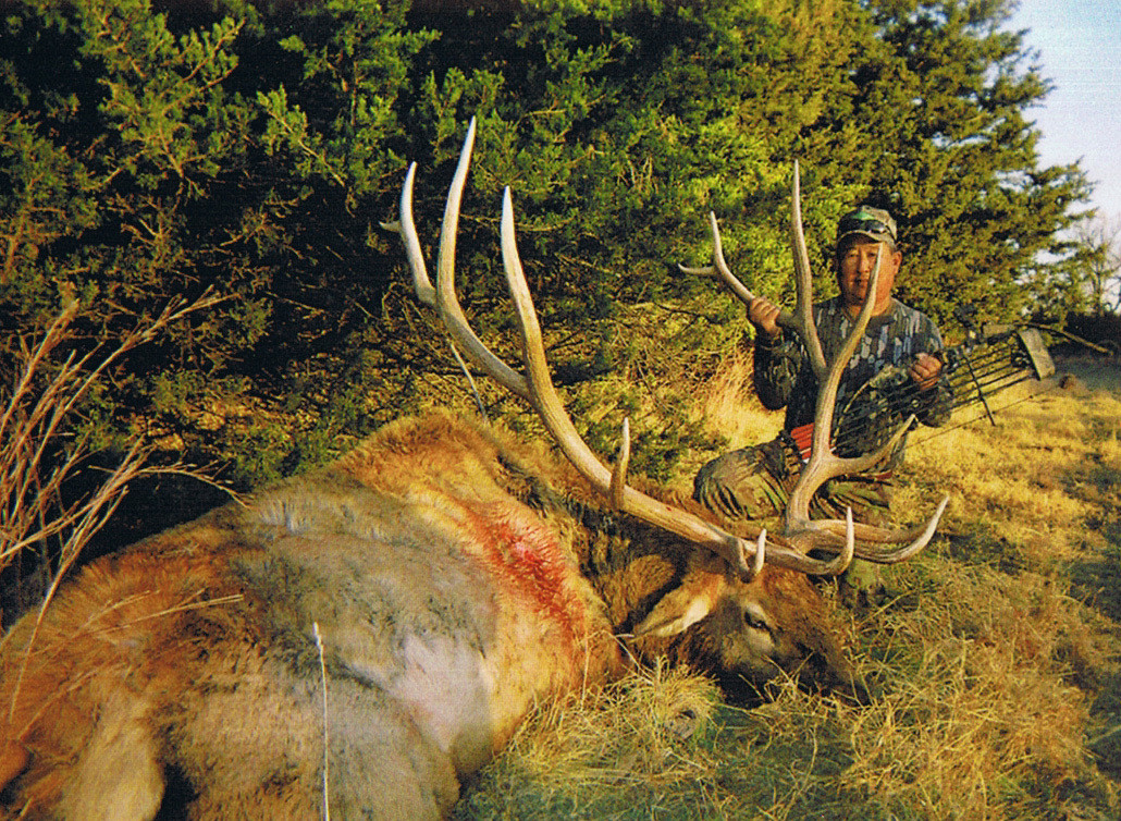 Huge Bull Elk - Kansas Trophy Whitetails