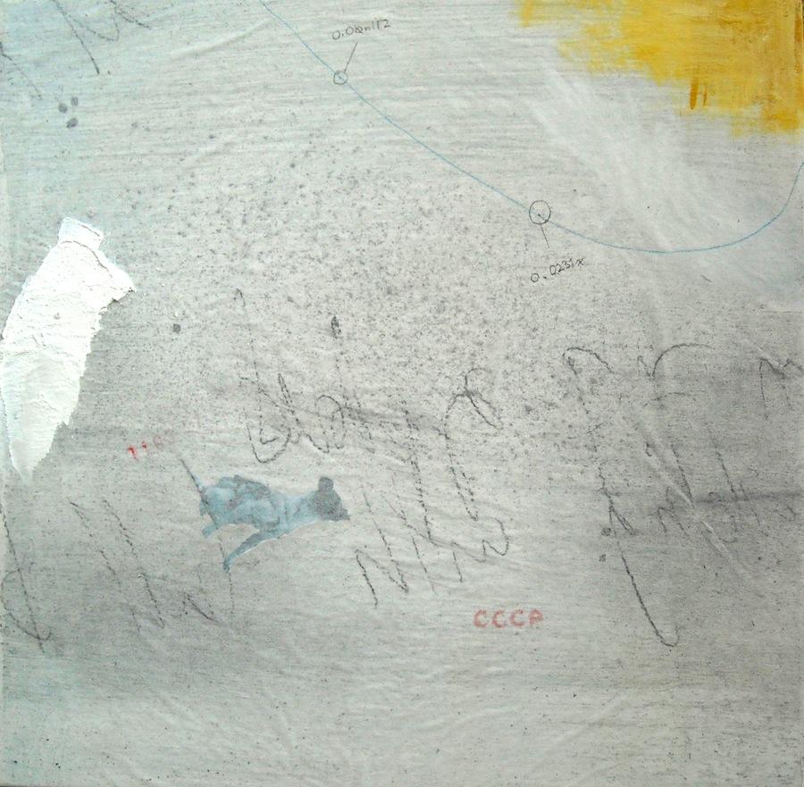 Laika 0.04, 2009