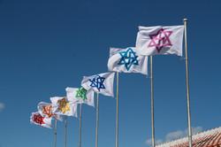 Raelian Flag