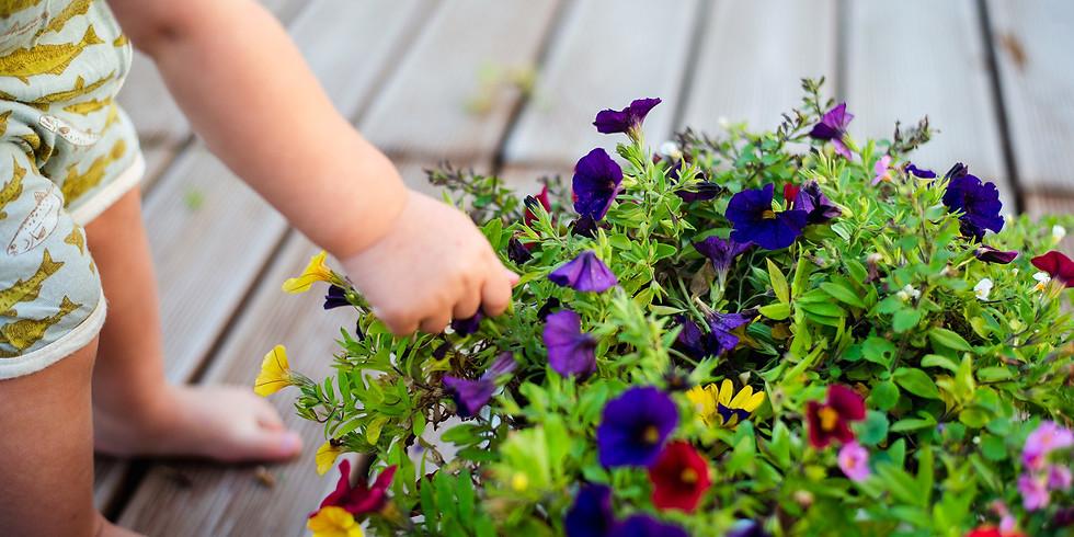 Veebiloeng: kuidas tajub väikelaps maailma?