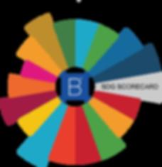 SDG LOGO.png