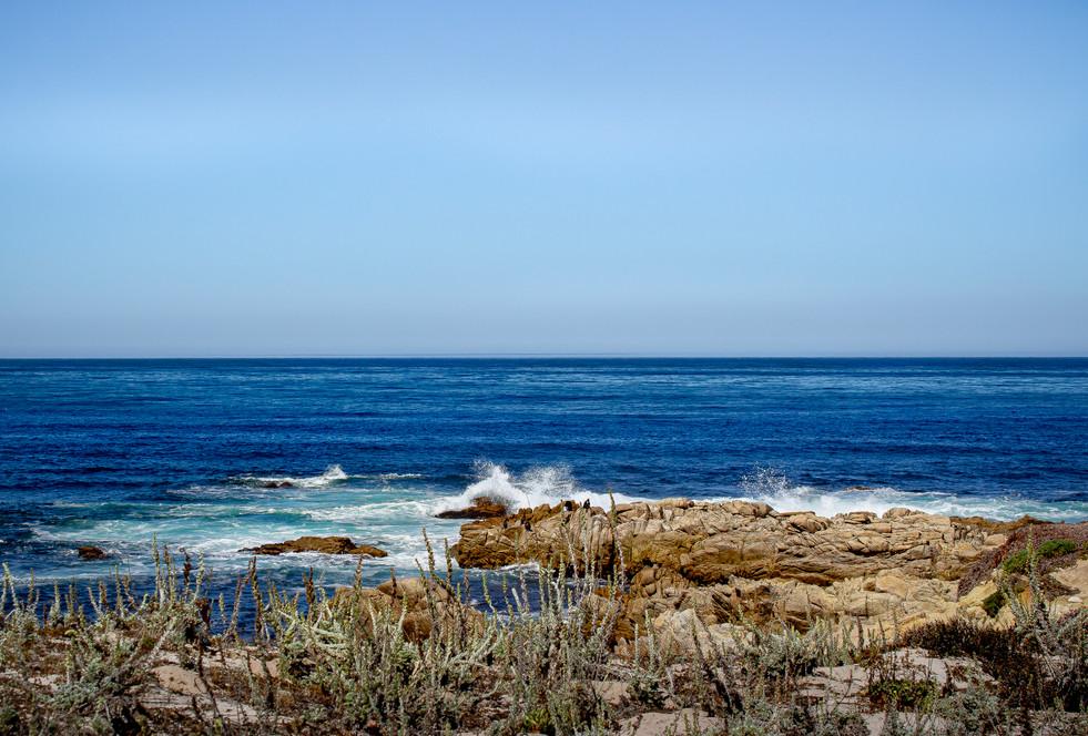 carmel by the sea