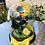Thumbnail: Girasol Preservado 27x20