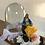 Thumbnail: Virgencita en domo sin luz