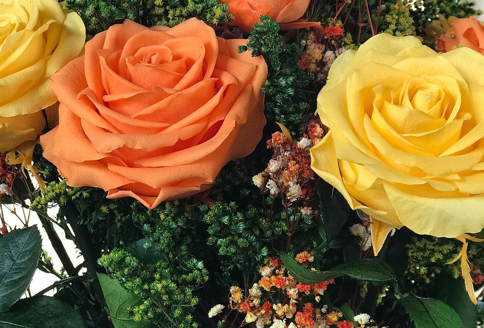 Rosas Isabel
