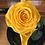 Thumbnail: Rosa Bella  Premium en Cúpula 20x14