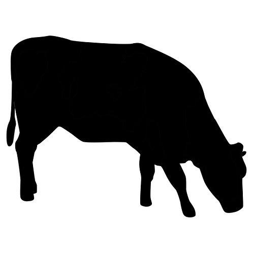 5kg Organic, Pasture Raised Beef Box