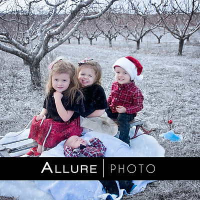Alvarez Christmas Session