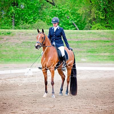 Hudson Valley Arabian Horse Association