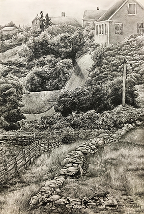Hill in the Summer- Block Island (Print)
